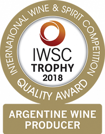 Argentine Wine Producer Of The Year Trophy 2018