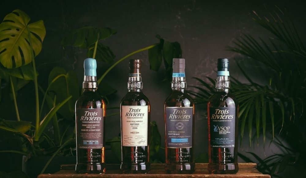 Eight rums that scored over 96 points