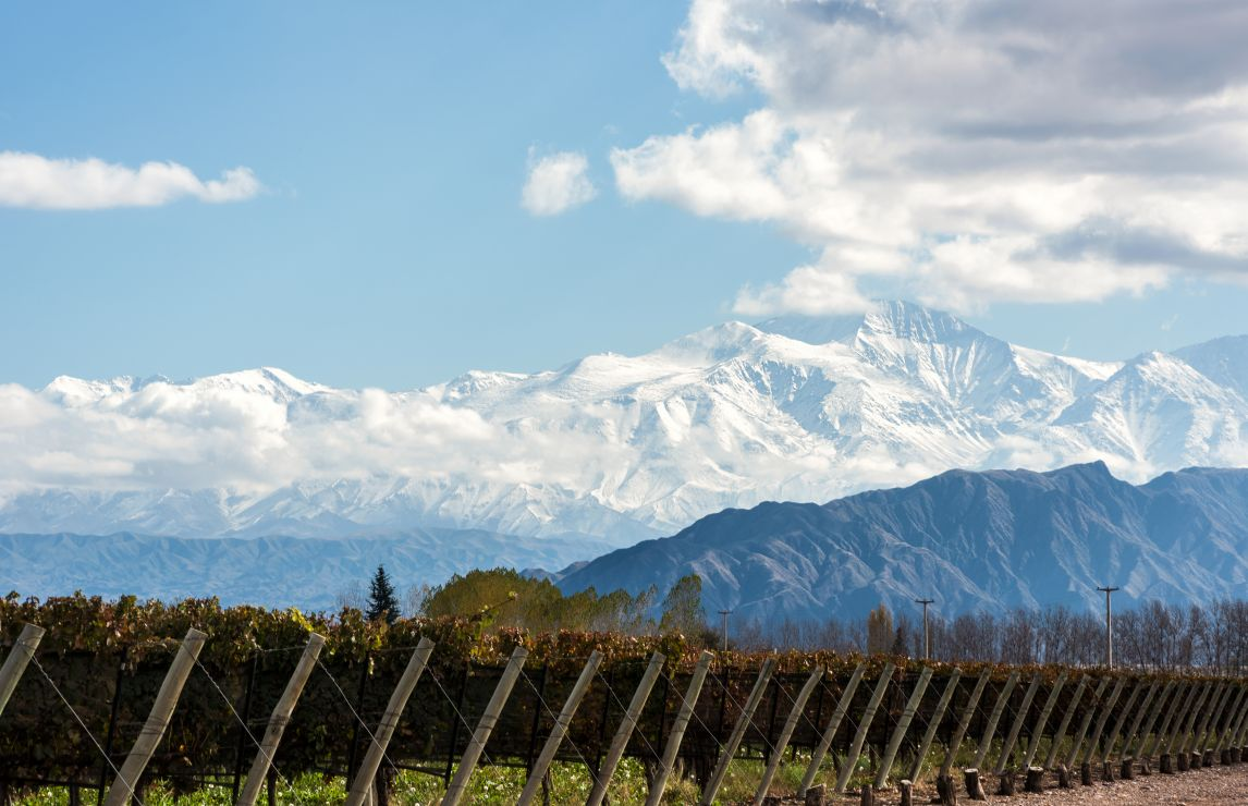 Latest results celebrate wines from Chile, Argentina – and Kenya