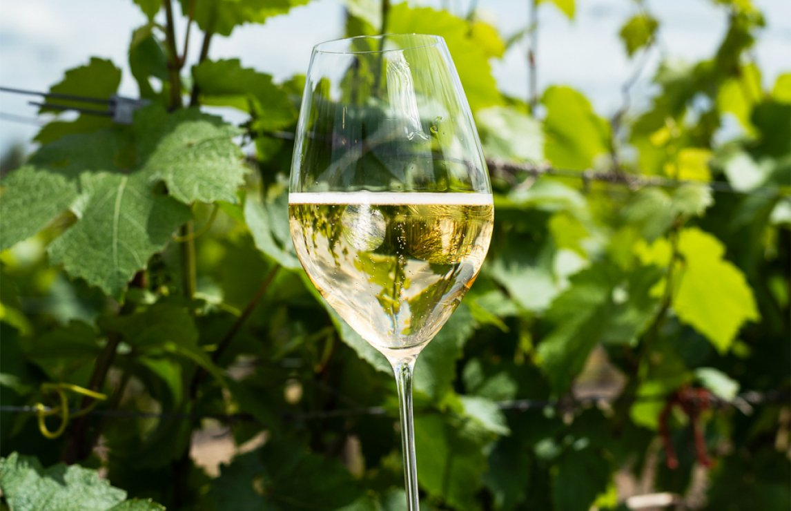 20 best English sparkling wines