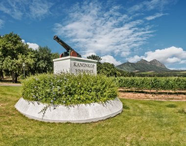 Outstanding Wine Producer 2019: Kanonkop