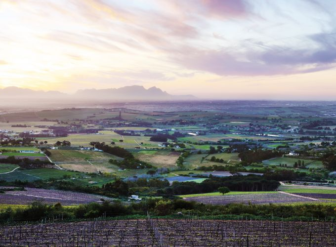IWSC celebrates best year yet for South African wines